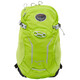 Osprey Syncro 15 Backpack S/M green